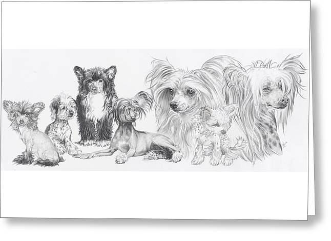 Toy Dog Drawings Greeting Cards - Growing Up Chinese Crested and Powderpuff Greeting Card by Barbara Keith