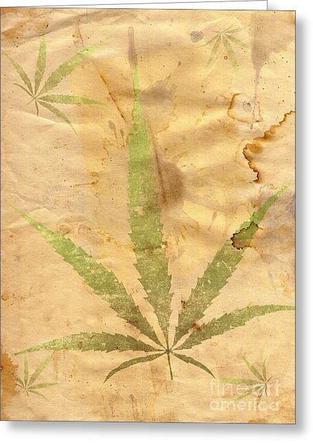 Spats Greeting Cards - Grunge Paper With Leaf Of Grass Greeting Card by Michal Boubin