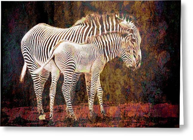 Grunge Zebras Greeting Card by Sari Sauls