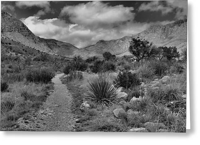 Guadalupe Greeting Cards - Guadalupe Mountains Morning Greeting Card by Stephen  Vecchiotti
