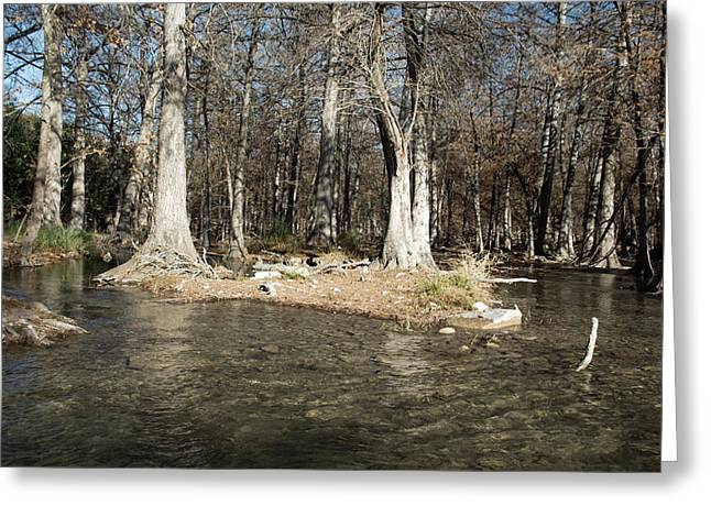 Clean Water Greeting Cards - Guadalupe River in Winter Greeting Card by Karen Musick