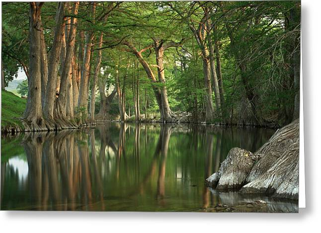 Cypress Hills Greeting Cards - Guadalupe River Reflections Greeting Card by Paul Huchton