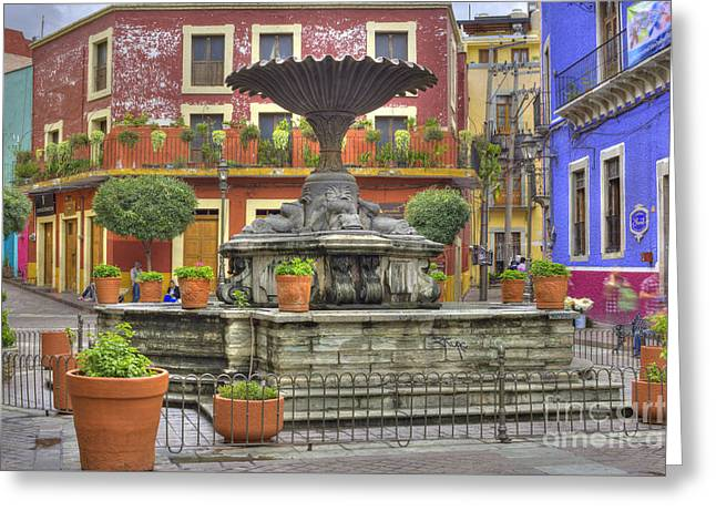 Guanajuato Mexico Greeting Card by Juli Scalzi
