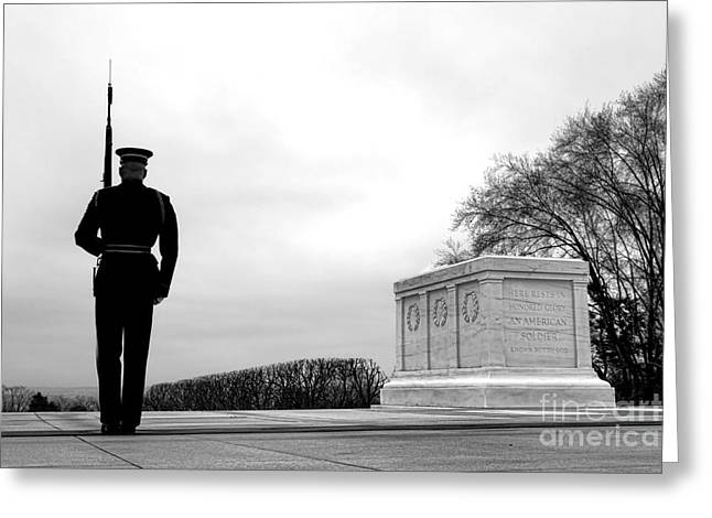 Guarding The Unknown Soldier Greeting Card by Olivier Le Queinec