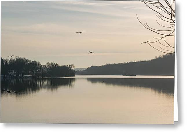 Reflections In River Greeting Cards - Gulls Over the Ohio Greeting Card by Jan Holden