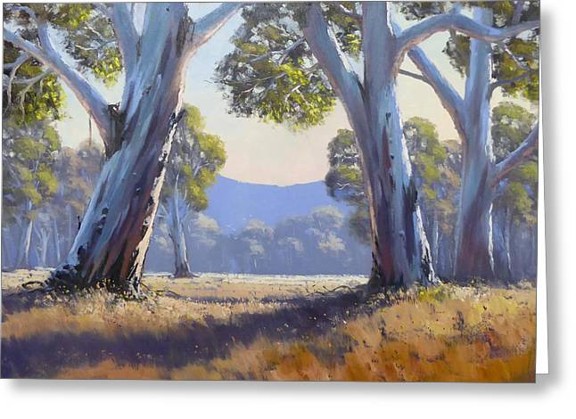 Impressionist Greeting Cards - Gums In Afternoon Light Greeting Card by John Rice