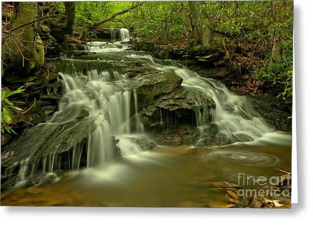 Gushing At Cave Falls Greeting Card by Adam Jewell