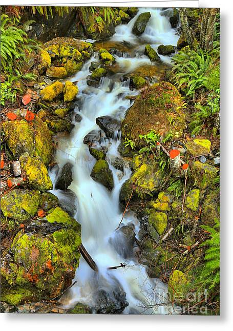 Gushing Through The Rocks Greeting Card by Adam Jewell