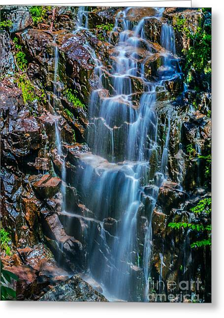 Fall Trees Greeting Cards - Hadlock Falls in Acadia National Park Greeting Card by Claudia Mottram