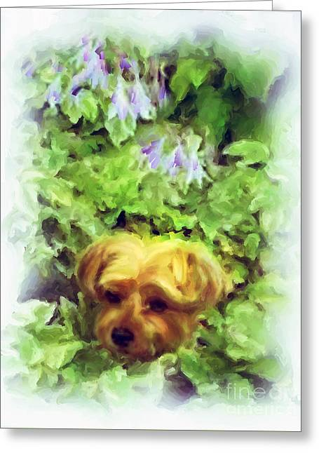Dogs Digital Art Greeting Cards - Haley in the Hostas Greeting Card by Robin  Waters
