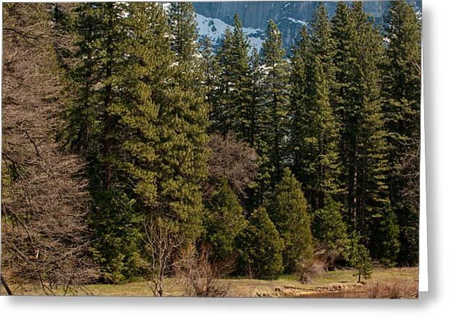 Half Dome Yosemite Greeting Card by Tom Dowd