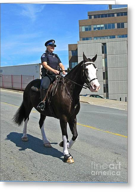 Halifax Photographs Greeting Cards - Halifax Police Mounted Division Greeting Card by John Malone