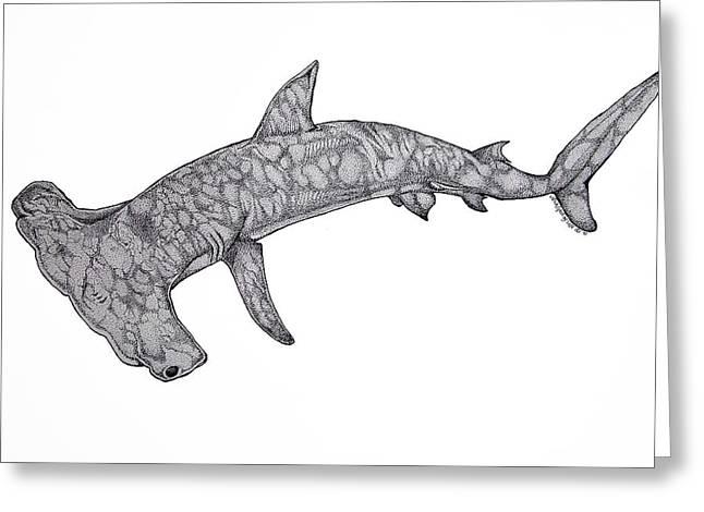 Shark Art Greeting Cards - Hammer Head Shark Greeting Card by Nick Gustafson