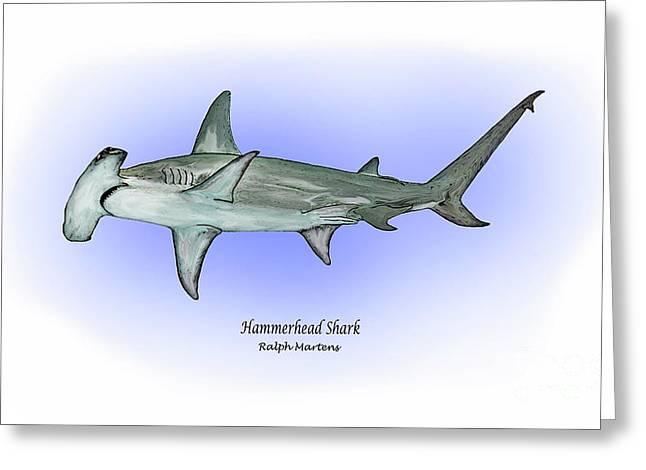 Hammerhead Sharks Greeting Cards - Hammerhead shark Greeting Card by Ralph Martens