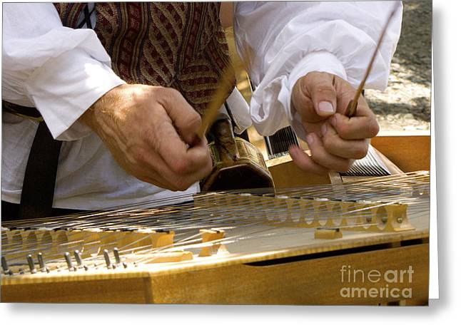 Kitten Prints Greeting Cards - Hammering the Dulcimer Greeting Card by Phil Welsher