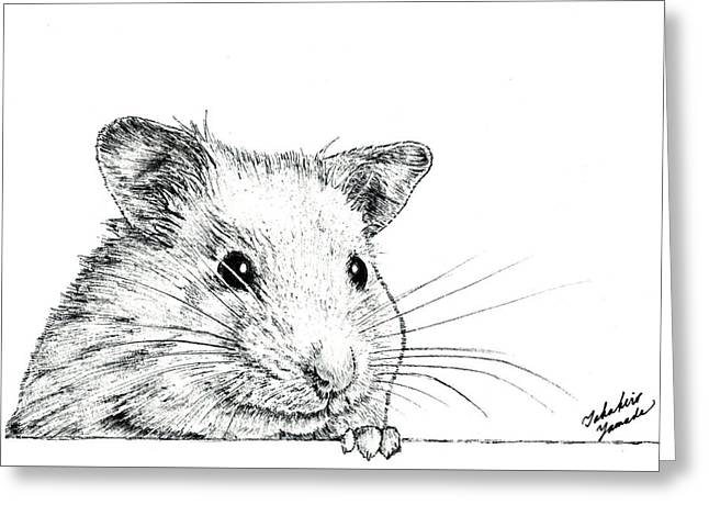 Hamster Drawings Greeting Cards - Hamster  Greeting Card by Takahiro Yamada