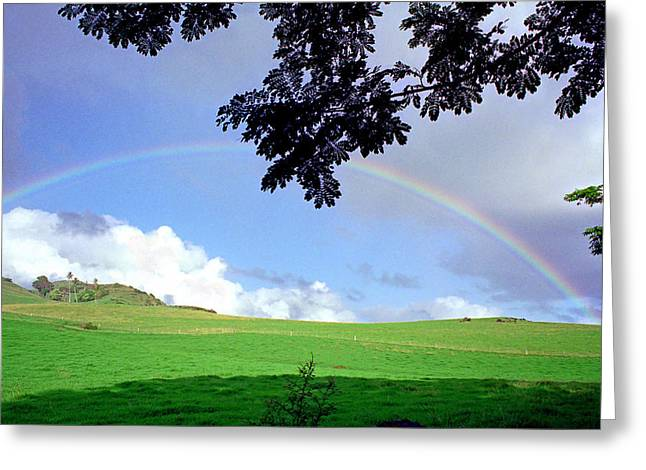 Kevin Smith Greeting Cards - Hana Rainbow Greeting Card by Kevin Smith