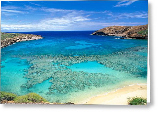 Snorkel Greeting Cards - Hanauma Bay Greeting Card by Peter French - Printscapes