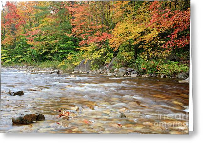 Scenic Byways Greeting Cards - Hancock Branch - White Mountains New Hampshire  Greeting Card by Erin Paul Donovan