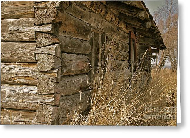 Log Homes Greeting Cards - Hand Crafted Greeting Card by Rick  Monyahan