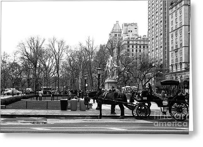 Handsome Cab At The Grand Army Plaza Greeting Card by John Rizzuto