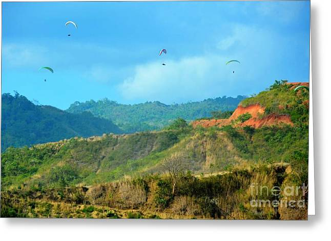 Hang Gliders Greeting Card by Debbi Granruth