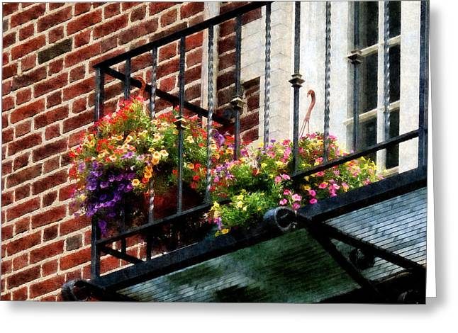 Basket Greeting Cards - Hanging Basket on Fire Escape Greeting Card by Susan Savad