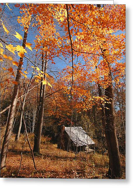 Log Cabins Greeting Cards - Hannah Cabin Greeting Card by Alan Lenk