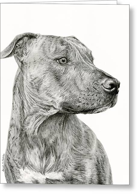 Bully Greeting Cards - Ittie Bittie Pittie Greeting Card by Sarah Batalka