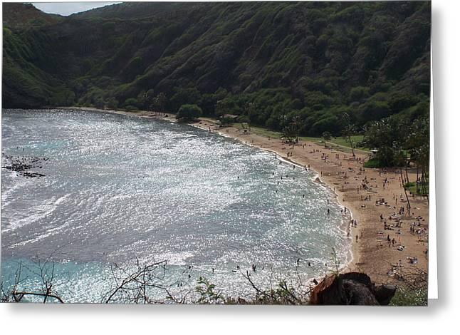 Snorkelling Greeting Cards - Hanuma Bay Honolulu Greeting Card by Vijay Sharon Govender