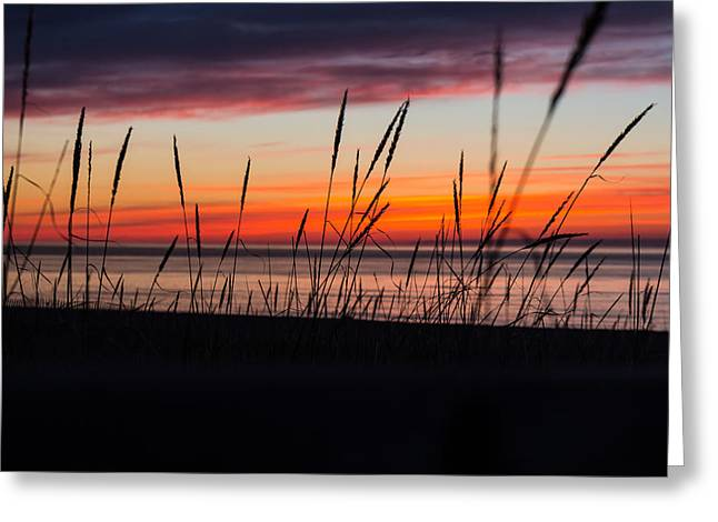 Agate Beach Greeting Cards - Happenstance Greeting Card by Lee and Michael Beek