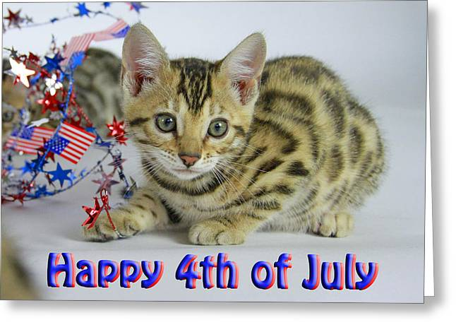 Red White And Blue Pyrography Greeting Cards - Happy 4th of July Greeting Card by Shoal Hollingsworth