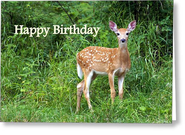 Happy Birthday 1 Greeting Card by Marty Koch