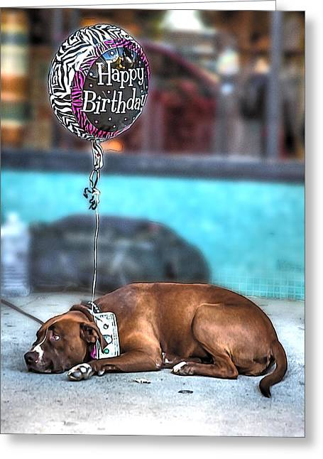 Puppy Digital Art Greeting Cards - Happy Birthday Dog Greeting Card by John Haldane