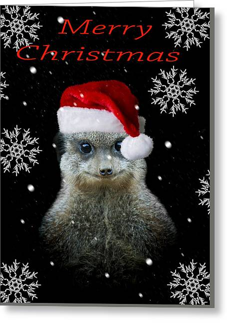 Happy Christmas Greeting Card by Paul Neville