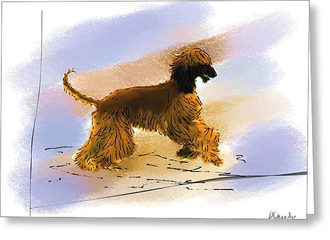 Afghan Hound Watercolor Greeting Cards - Happy Dance Greeting Card by Diane Chandler
