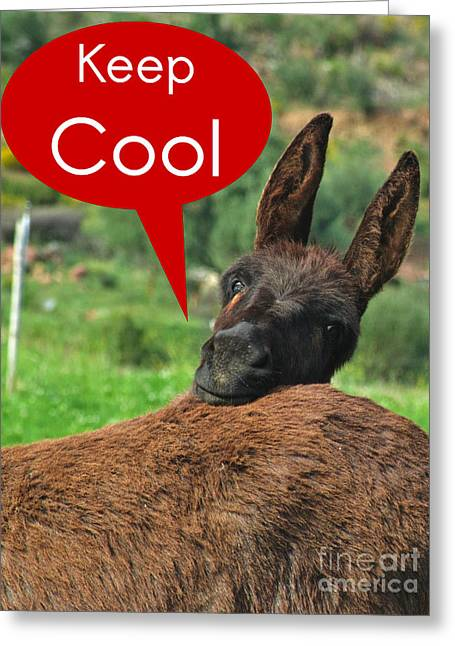 Speech Balloon Greeting Cards - Happy Donkey - Keep Cool Greeting Card by Angelo DeVal