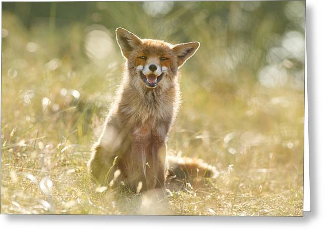 Ease Greeting Cards - Happy Fox is Happy Greeting Card by Roeselien Raimond