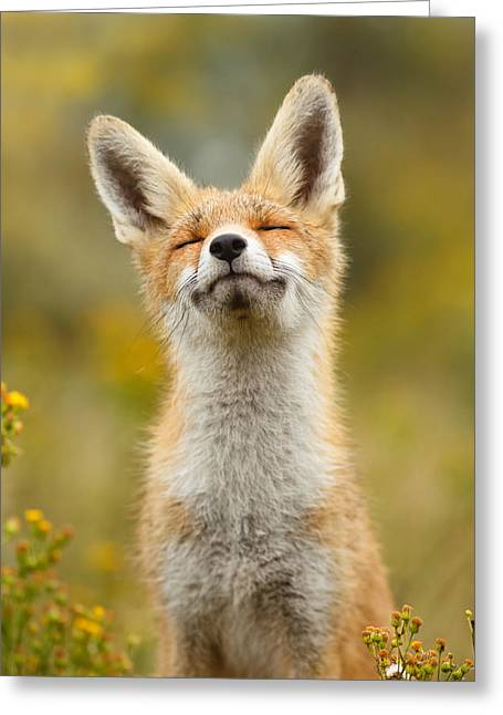 Happy Fox Greeting Card by Roeselien Raimond