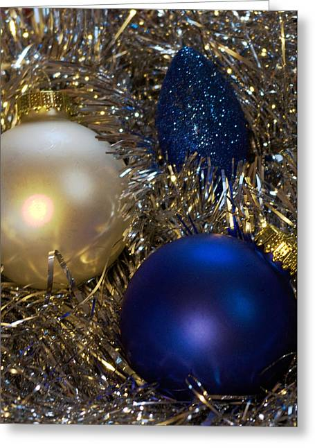 Christmas Greeting Photographs Greeting Cards - Happy Holidays Card 02 Greeting Card by Karen Musick