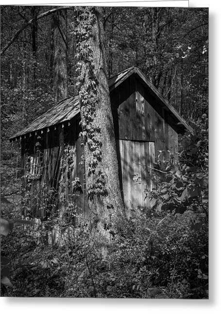 Roanoke Greeting Cards - Happy Hollow Shed B W Greeting Card by Teresa Mucha