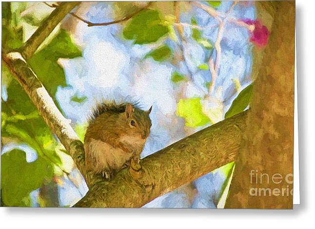 Wild Orchards Greeting Cards - Happy Meal Greeting Card by Judy Kay