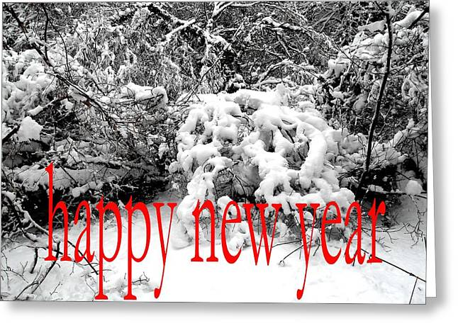 Celebration Art Print Greeting Cards - Happy New Year 29 Greeting Card by Patrick J Murphy
