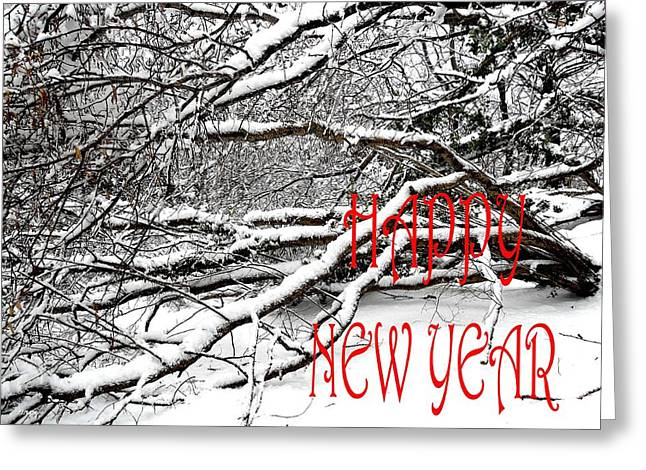 Celebration Art Print Greeting Cards - Happy New Year 30 Greeting Card by Patrick J Murphy