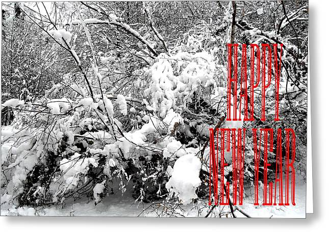 Celebration Art Print Greeting Cards - Happy New Year 32 Greeting Card by Patrick J Murphy