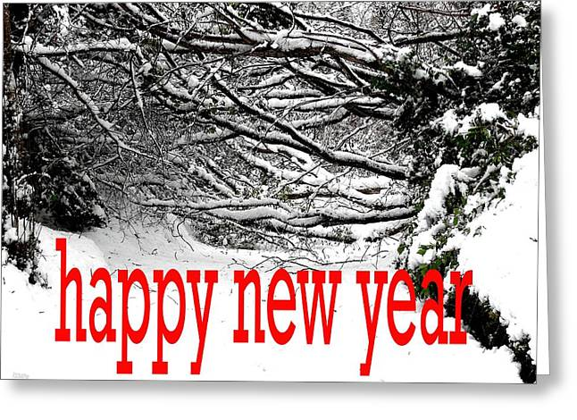 Celebration Art Print Greeting Cards - Happy New Year 33 Greeting Card by Patrick J Murphy