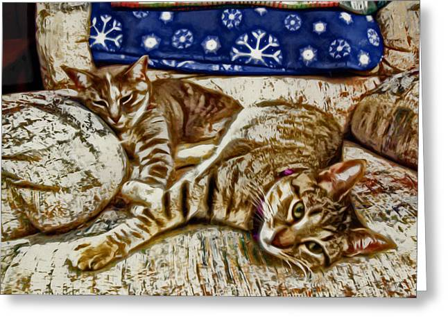 Happy Together Greeting Card by David G Paul