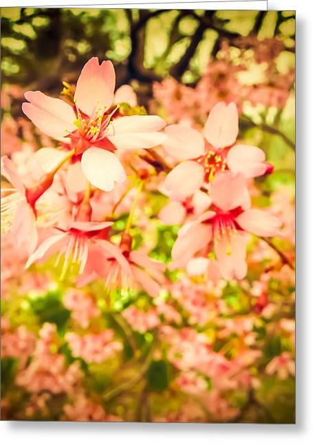 Harbingers Of Spring Greeting Card by Jon Woodhams