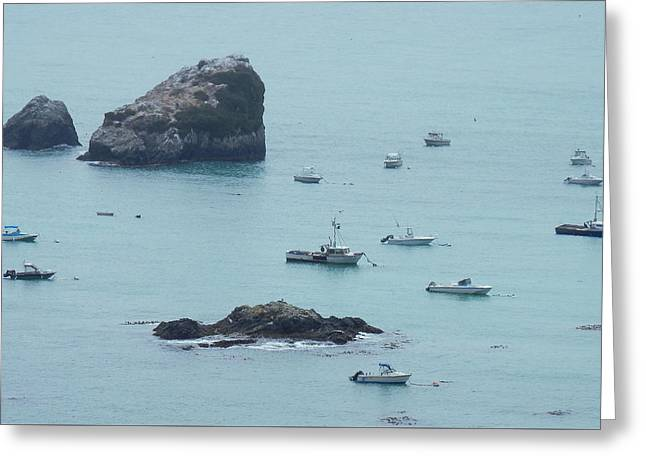 California Ocean Photography Greeting Cards - Harbor Boats Greeting Card by Teresa St George