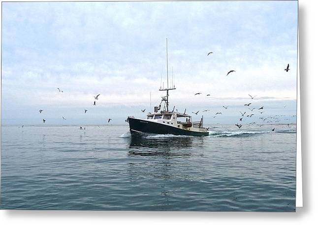 Chatham Greeting Cards - Harbor Bound Decisive Greeting Card by Heather MacKenzie
